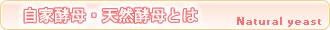 自家酵母大河 ・ 天然酵母とは  兵庫県西宮市にて無添加・卵不使用のパン・クッキーの販売・通販 自家酵母大河