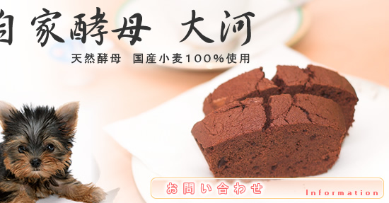 お問い合わせ  兵庫県西宮市にて無添加・卵不使用のパン・クッキーの販売・通販 自家酵母大河